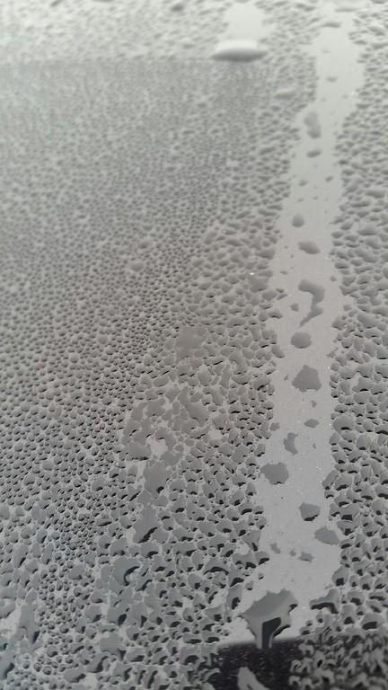 WEEK 8 - WATER - MONICA